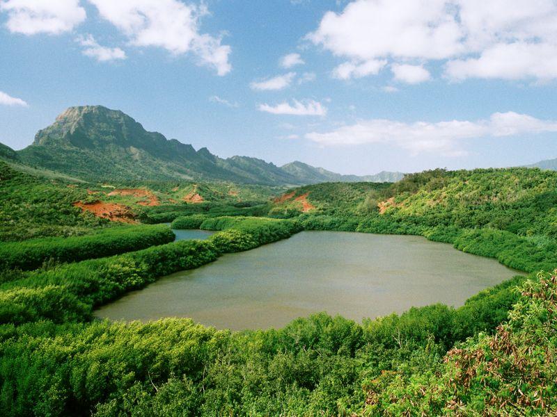 Hawai-Menehune_fish_pond