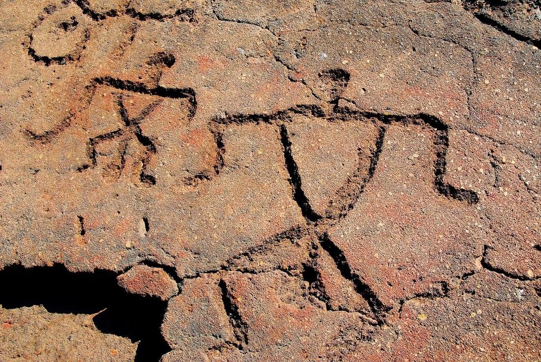 puako-petroglyph-hawai
